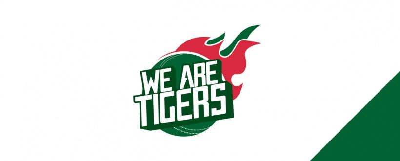 portfolio-we-are-tigers